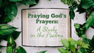 Psalms Series Image